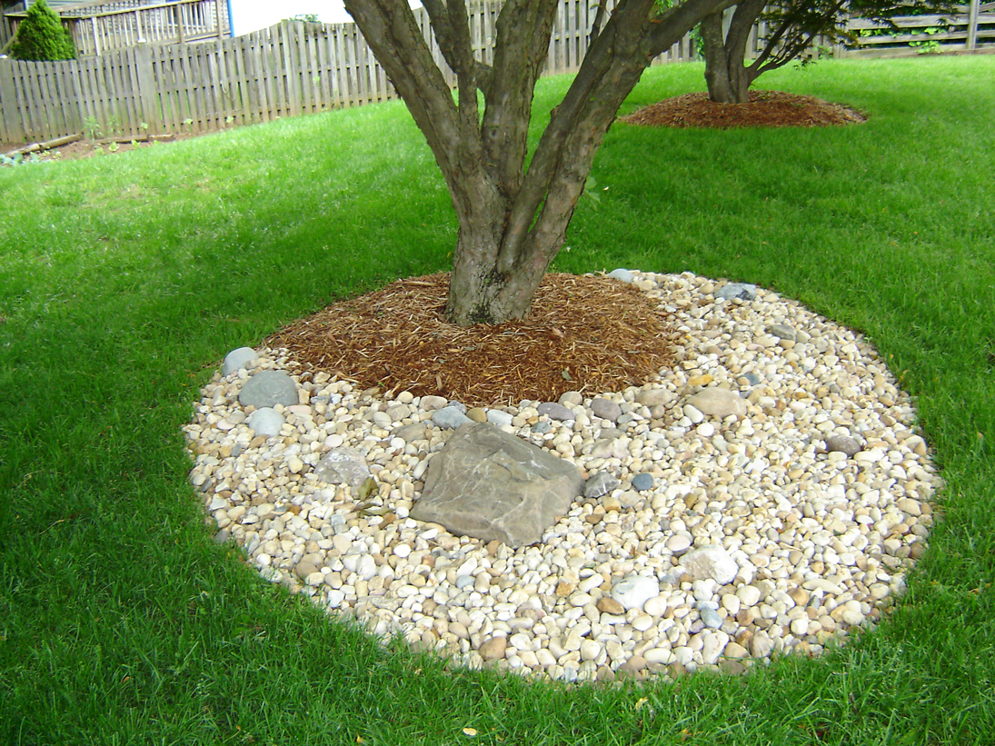 Tree Ring Gravel