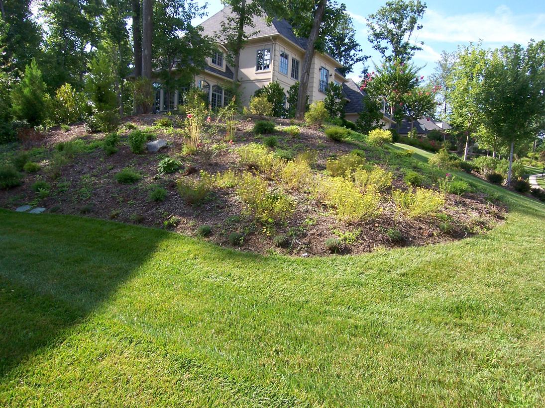 Landscape & Plant Design